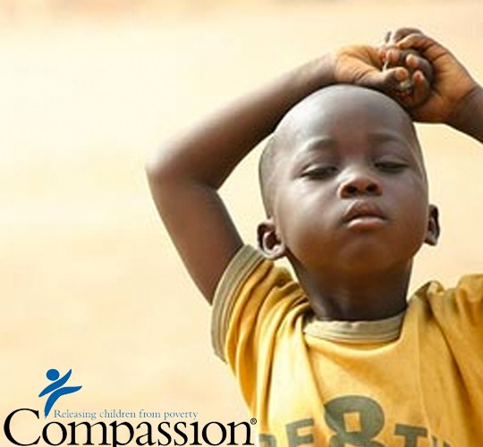Compassion Project Update